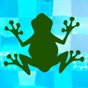 Frogger Jr