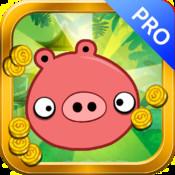 Piggy Temple Rush Pro