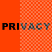 Privacy Screen Filter