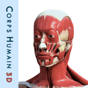 Corps humain 3D : Anatomie Humaine Interactive