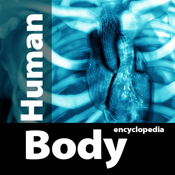 Human Body Anatomy Encyclopedia