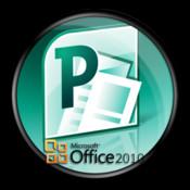 Microsoft Project - Professional Handbook project professional