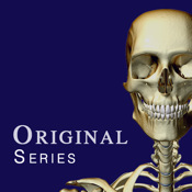 Skeletal System - (Original Series) - iPhone ed...