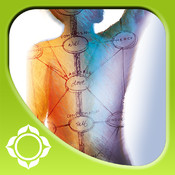 Advanced Energy Anatomy – Caroline Myss