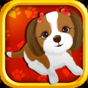 Pet Slots XP - Free Las Vegas Casino Fun With Animals office xp free copy