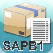 SAP B1 Inventory item information different item