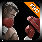 Street Boxing 3D Pro
