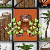 Touch the Orangutan