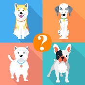 Dog Breeds Quiz For Animal Lovers - Guess Most Popular Small,Hound & Large Dogs Breed Names breed