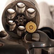 Revolver - Realistic Gun Simulator