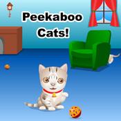 Peekaboo Cats!