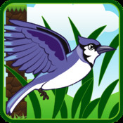 Bird Adventure Tap Game PRO- A Flying City Fun Game of Skill