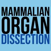 Mammalian Organ Dissection