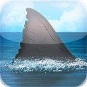 Shark Net - Predators of the Blue Serengeti