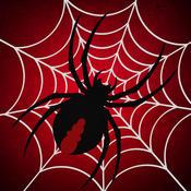 Amazing Sliding Spider Puzzle Pro