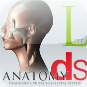 DS ANATOMY HEAD & NECK MUSCULOSKELETAL SYSTEM Lite ds lite zelda