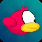 Fly Bird: star