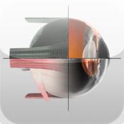 Sight Selector Eye Subscription subscription