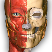 Visual Anatomy Free- Medical Dictionary for Medical Student
