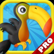 Crazy Birds Bubble Adventure PRO