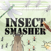 Insect Smasher !