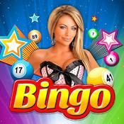 Big Game Bingo Blitz - The Lucky Play Casino Games