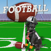 Football Dress Up Picture Editor