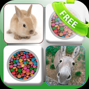 Doodle Pair Animals! Domestic&Pets - Photo Match Up Game Free Version (Picture Match)