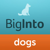 BigInto Dogs and Puppies - Tips, Training, Photos and Blogs