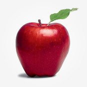 TLTP Education – Teaching & Education Jobs education