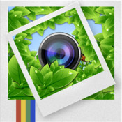 Frame-it Free - Arty Picture Frames & Photo Collage With Instagram Ready Square Frames!