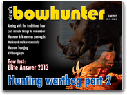 Africas Bowhunter