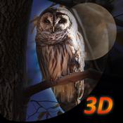 Owl Bird Survival Simulator 3D rslogix simulator