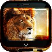 Lion Artwork Gallery HD – Animal Kingdom Wallpapers , Themes and Gallery Backgrounds elizabeth berkley gallery