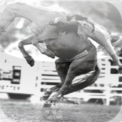 BEST OF RODEOS—Truly Western Professionals