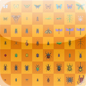 Insects Memory Cards Game