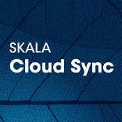 SKALA Cloud Sync cloud sync schedule