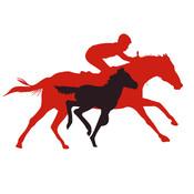 Breeding&Racing