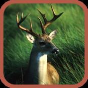 Deer Hunter Pro