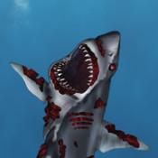 Zombie Shark Attack