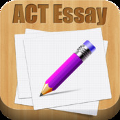 Essay – write in style review