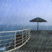 Soft Sound: with wind, waves, raining, thunder, birds, cricket sound sound