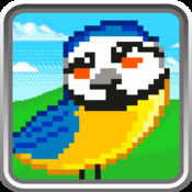 Bird Puzzle Match - Free Strategy Match 3 Impossible Game