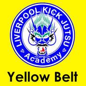 Yellow Belt Kick Jutsu