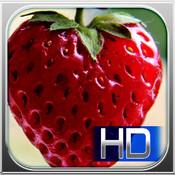 FoodScreenz HD preview