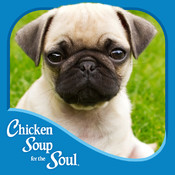 For the Love of Dogs from Chicken Soup for the Soul ®