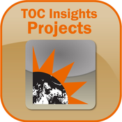 TOC Insights into Project Management and Engineering - Critical Chain Project Management: Theory of Constraints solution developed by Eliyahu M. Goldratt management