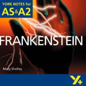 York Notes Frankenstein A Level