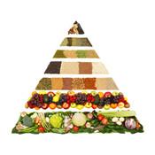 Ketogenic Diet - Best Video Guide longevity diet