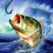 Fishing Champion HD